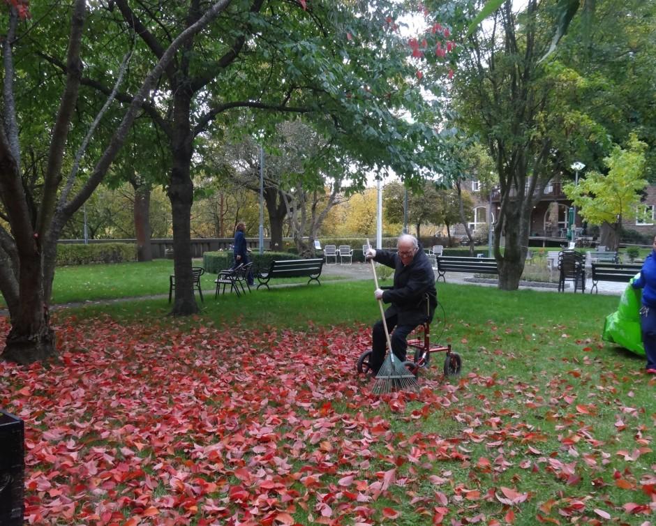 trädgårdsdag okt2015 011 - Kopia
